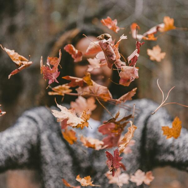 Herbst Musik Spotify Playlist Autumn Hits